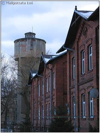 Piastow(19)